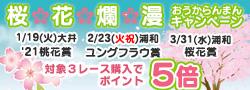 桜花爛漫キャンペーン